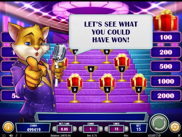 Bonus Cats and Cash czyli dodatkowa runda, w której gracz musi wybrać jeden prezent. TP Cats and Cash wynosi 96%.